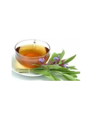 Salvie - Salvia Officinalis